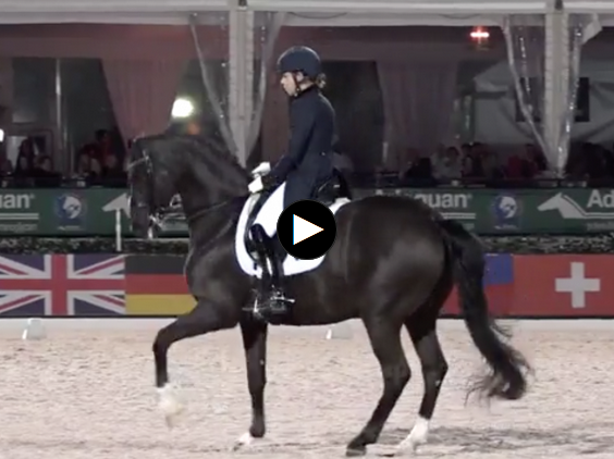 WATCH Chase Hickok and Sagacious HF Take Second Place in AGDF 8 Palm Beach Dressage Derby FEI Grand Prix Freestyle presented by Everglades Dressage